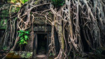 Schaurig aber schön: 20 verlassene Orte