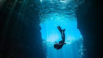 Die geheimnisvolle Entdeckung einer Meeresbiologin