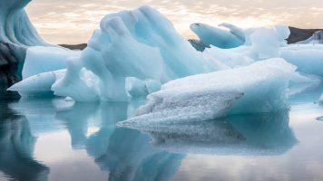Diese Fischer haben eine erstaunliche Entdeckung auf einem Eisberg gemacht